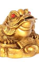 La ce trebuie să fii atent când achiziționezi o broască norocoasă Feng Shui și cum îți poate aduce bani și prosperitate. Chan Chu sau Broasca norocoasă,