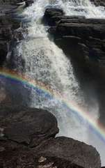 Natura reînvie, viața prinde culoare și imaginația este în floare! În scurt timp, culorile vor prinde putere, iar noi vom fi desfătați pe deplin de primele