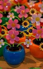 Plante din plastic pentru decoruri elegante, cu bun feng shui? Rolul și simbolistica plantelor articiale în casă. Feng Shui-ul propune echilibrul celor cinci