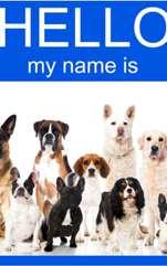 Nu știi ce nume să pui cățelului tău? Listă cu cele mai populare nume de câini românești și străine. Cine nu îndrăgește câinii, aceste patrupede care