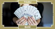 Zodiac chinezesc 2020 Tigru, horoscop bani Tigru în muncă și carieră