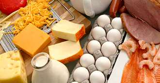 Alimente bogate în proteine – Dieta cu proteine