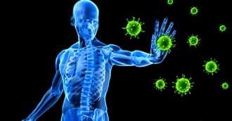 Alimente minune care întăresc sistemul imunitar