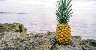 Ananasul – fructul dulce acrișor cu multiple beneficii