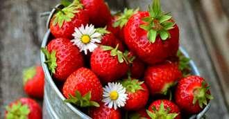 Gustarea dulce cu puține calorii. Beneficiile neștiute ale consumului de căpșuni