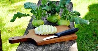 Gulia – Valori nutriționale și efecte surprinzătoare asupra organismului