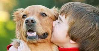 Ce animal de companie se potrivește cel mai bine pentru copilul tău