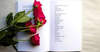 Ai primit un trandafir și nu știi ce vrea să îți transmită? Descoperă legendele trandafirului