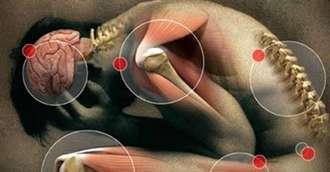 Corpul ne transmite frecvent semnale de alarmă! Află care sunt acestea