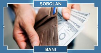 Zodiac chinezesc 2020 Șobolan, horoscop bani, muncă și afaceri