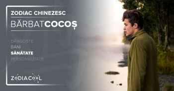 Sănătate bărbatul Cocoș, Horoscop chinezesc zodia Cocoș