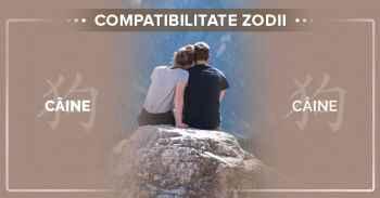 Compatibilități zodii chinezești Compatibilitate CAINE CAINE^Compatibilitate intre femeia Caine si barbatul Caine.