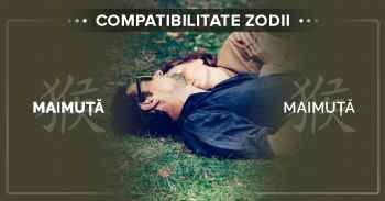 Compatibilități zodii chinezești. Detalii compatibilitate MAIMUTA MAIMUTA^Compatibilitatea dintre femeia Maimuta si barbatul Maimuta