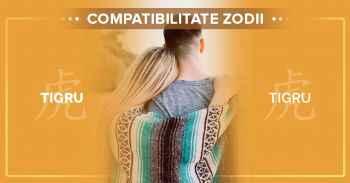 Compatibilitati zodii chinezesti, Detalii compatibilitate TIGRU TIGRU^Compatibilitatea zodiilor chinezesti-femeia Tigru si barbatul Tigru