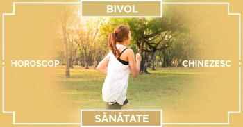 Zodiac chinezesc 2019 BIVOL, horoscop BANI Bivol SANATATE