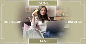 Zodiac chinezesc CAINE 2019, horoscop chinezesc BANI, carieră și afaceri