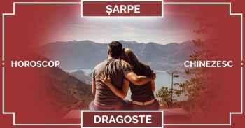 Zodiac chinezesc 2019 ȘARPE, horoscop chinezesc 2019 DRAGOSTE