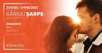 Zodia SARPE. BARBATUL Sarpe, Horoscop chinezesc  Dragoste.