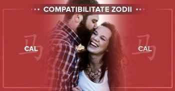 Compatibilități zodii chinezești, Informații compatibilitate CAL CAL^Compatibilitate Cal Cal.Femeia  Cal si barbatul Cal.