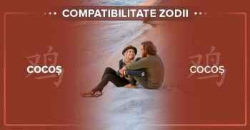 Compatibilități zodii chinezești. Detalii compatibilitate COCOS COCOS^Compatibilitate femeia Cocos cu barbatul Cocos.