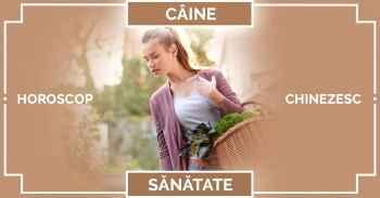 Zodiac chinezesc CAINE 2019, horoscop chinezesc SANATATE