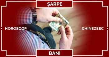 Zodiac chinezesc 2019, SARPE horoscop chinezesc 2019 BANI