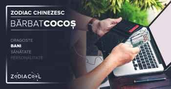 Zodia COCOS. BARBAT Cocos Bani, Horoscop chinezesc.ZODIACOOL