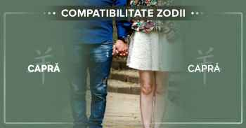 Compatibilități zodii chinezești, Informații compatibilitate CAPRA CAPRA^Compatibilitatea intre femeia Capra si barbatul Capra