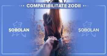 Zodiac chinezesc compatibilitati. Compatibilitate zodia sobolan^Compatibilitatea intre femeia Sobolan si barbatul Sobolan