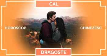 Zodiac chinezesc CAL 2019, horoscop chinezesc DRAGOSTE