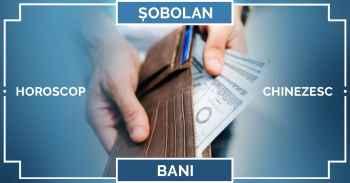Zodiac chinezesc 2019 SOBOLAN, horoscop BANI, muncă și afaceri