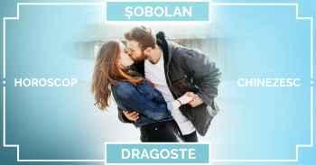 Zodiac chinezesc 2019 SOBOLAN, horoscop chinezesc căsătorie și relații