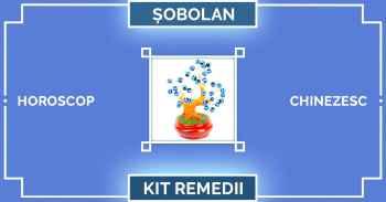 Remedii feng shui 2019 pentru zodia SOBOLAN